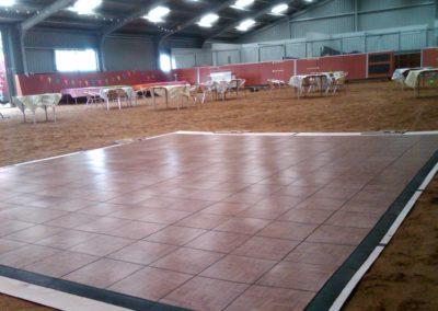 12,5 bruiloft in paardenbak te Lunteren